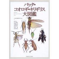 バッタコオロギキリギリス大図鑑.jpg