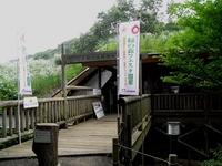 緑の森フェスタ.JPG