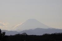 荒幡富士からの富士01.15.JPG
