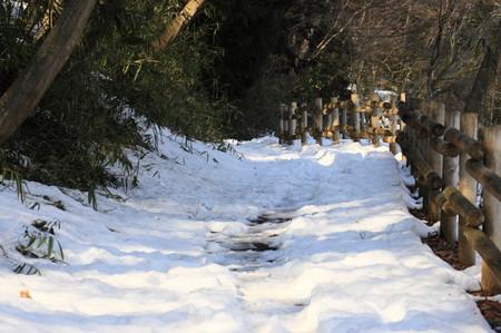 雪0223-1_1.JPG