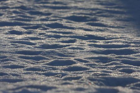 雪0223-3_1.JPG